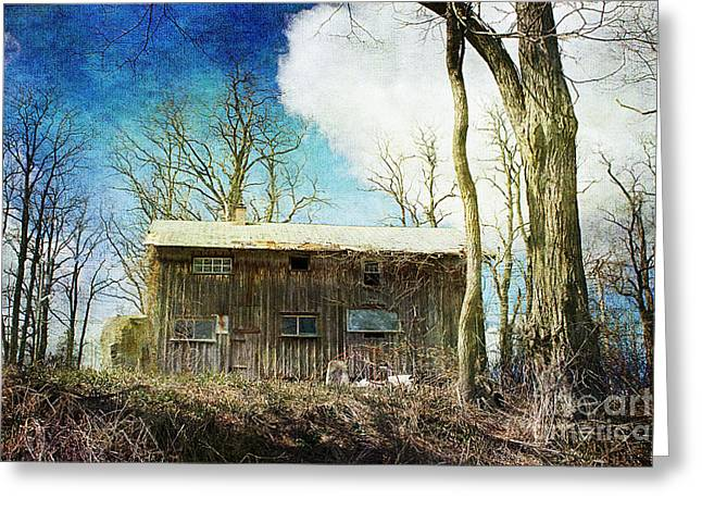 Cabin Fever Greeting Card by A New Focus Photography