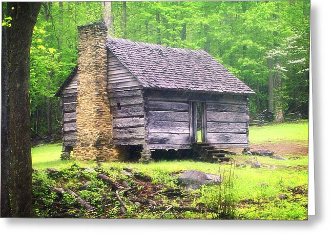 Cabin In The Smokies Greeting Card by Marty Koch