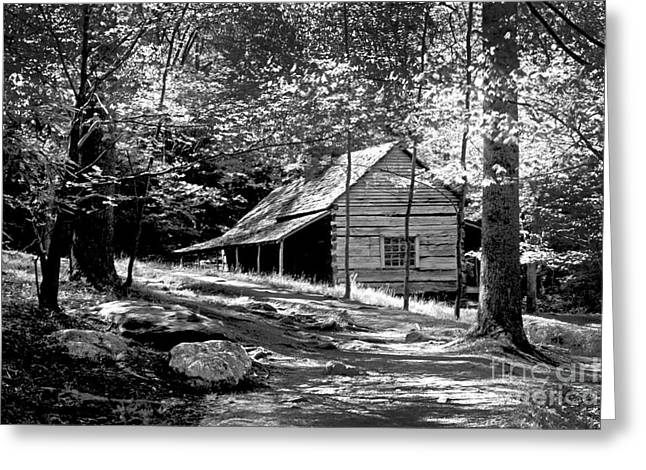 Log Cabins Greeting Cards - Cabin in the Woods Greeting Card by Paul W Faust -  Impressions of Light