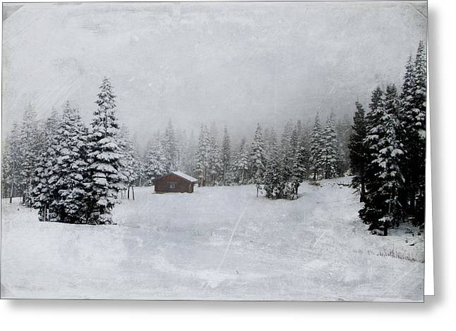 Sheds Greeting Cards - Cabin in the Woods-textured Greeting Card by Marilyn Wilson