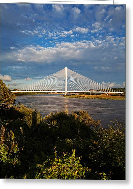Contemporary Photography Greeting Cards - Cable-stayed Bridge Over The River Suir Greeting Card by Panoramic Images