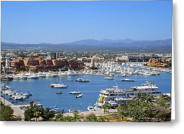 Cabo San Lucas Greeting Cards - Cabo San Lucas Harbor Greeting Card by Kelley King