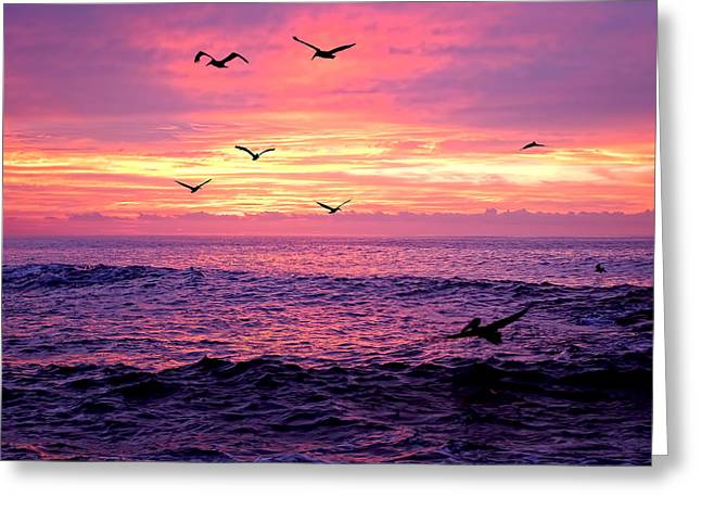 Cabo San Lucas Sunrise Greeting Card by Marcia Colelli