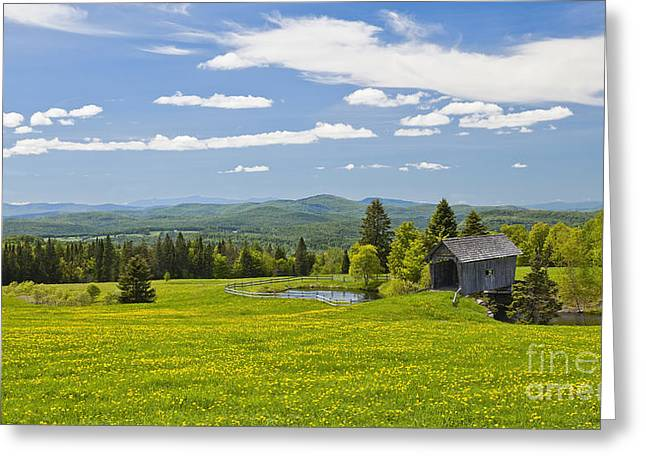 Covered Bridge Greeting Cards - Cabot Plains Spring Greeting Card by Alan L Graham