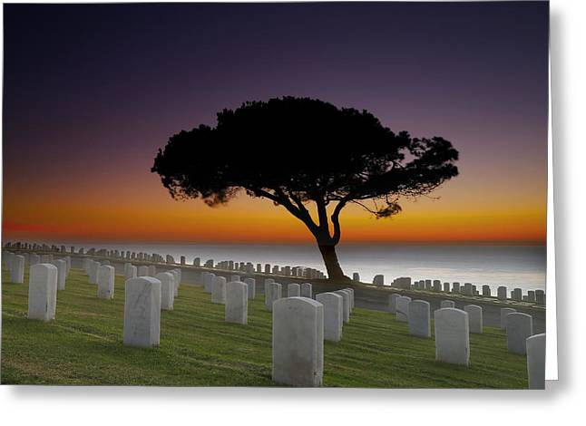 Cabrillo National Monument Cemetery Greeting Card by Larry Marshall