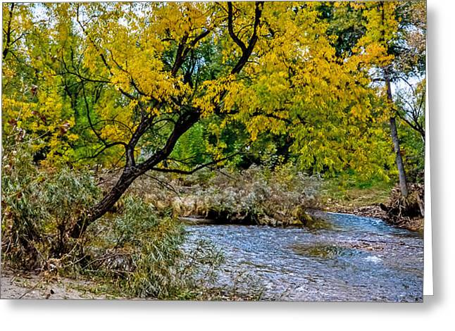 Cache La Poudre Greeting Card by Baywest Imaging