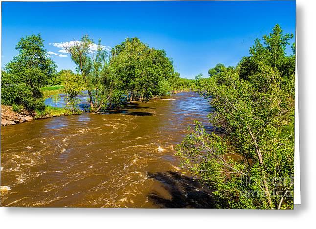 River Flooding Greeting Cards - Cache La Poudre River Flooding Greeting Card by Jon Burch Photography