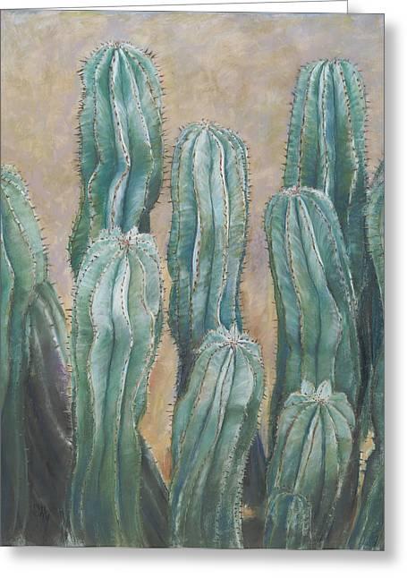 Birdseye Greeting Cards - Cacti Greeting Card by Nick Payne