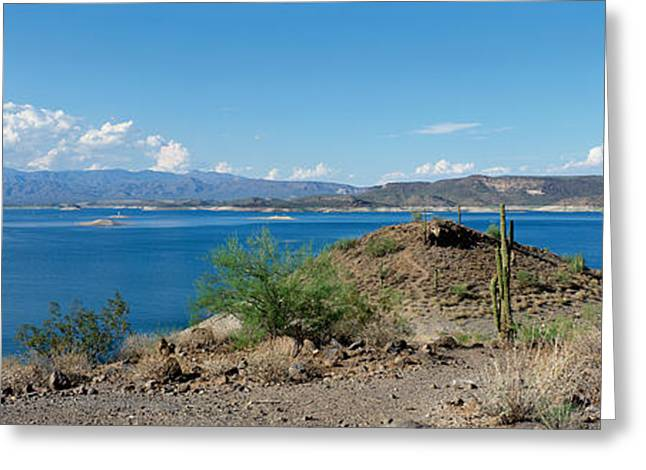 Desert Lake Greeting Cards - Cactus At The Lakeside With A Mountain Greeting Card by Panoramic Images