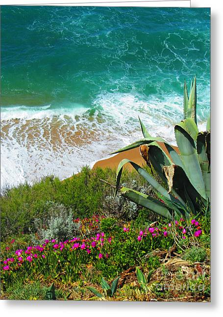 Sea View Greeting Cards - Cactus Coast Greeting Card by Callan Percy