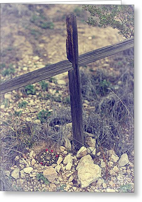 Cactus Marked Grave Greeting Card by Erika Weber
