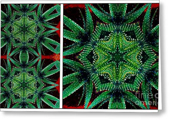Green Barbara Griffin Art Greeting Cards - Cactus Triptych Greeting Card by Barbara Griffin