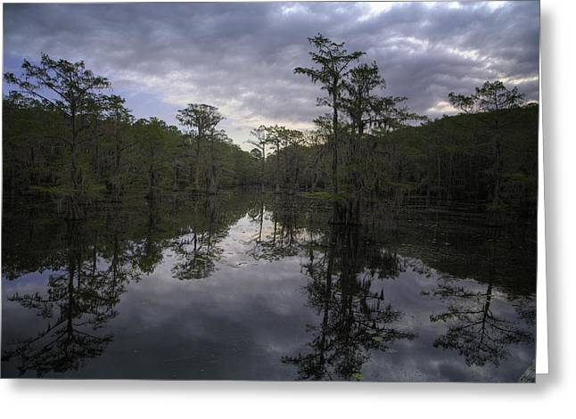"""caddo Lake"" Greeting Cards - Caddo Sunrise Greeting Card by John Hesley"