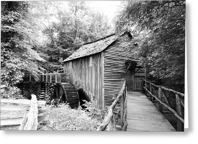 Tennessee Historic Site Photographs Greeting Cards - Cades Cove Cable Mill - BW Greeting Card by Cynthia Woods