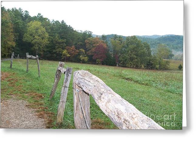 Blue Ridge Pyrography Greeting Cards - Cades Cove Fence Greeting Card by Marie Wehofer