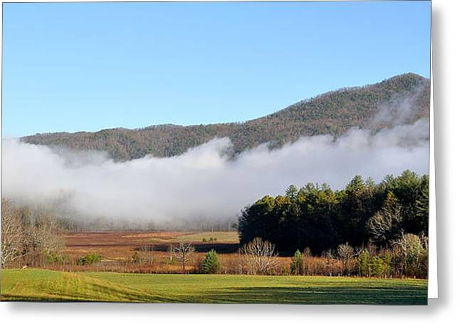 Tennessee Farm Greeting Cards - Cades Cove Fields Greeting Card by Todd Hostetter