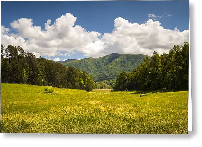Gatlinburg Tennessee Greeting Cards - Cades Cove Great Smoky Mountains National Park - Gold and Blue Greeting Card by Dave Allen