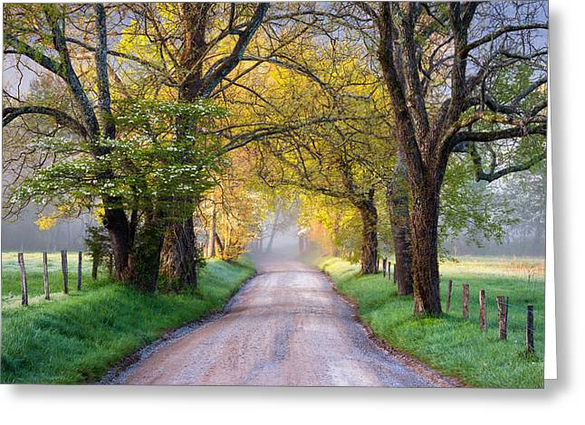 Dirt Road Greeting Cards - Cades Cove Great Smoky Mountains National Park - Sparks Lane Greeting Card by Dave Allen
