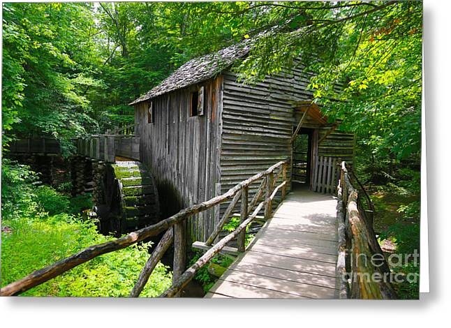 Gatlinburg Tennessee Greeting Cards - Cades Cove Grist Mill Greeting Card by John Roberts