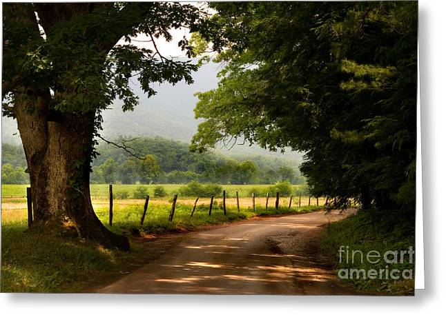 Gatlinburg Tennessee Greeting Cards - Cades Cove Loop Greeting Card by T Lowry Wilson