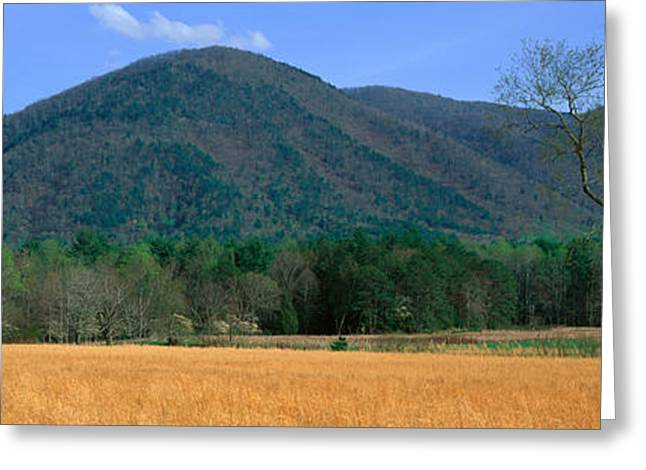 Tn Barn Greeting Cards - Cades Cove Pioneer Settlement, Great Greeting Card by Panoramic Images