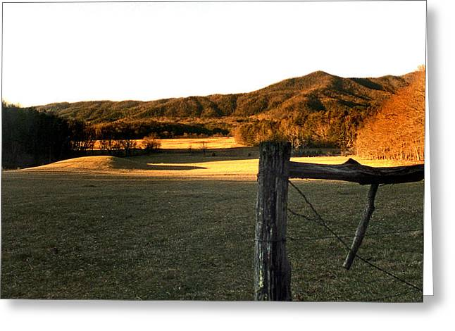 CADES COVE Greeting Card by Skip Willits