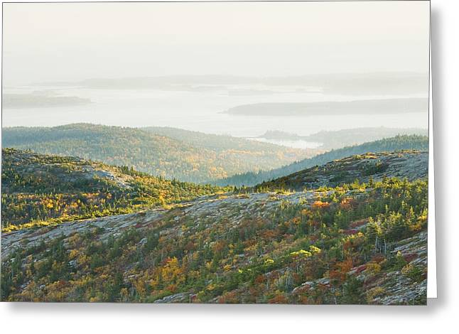 Maine Islands Greeting Cards - Cadillac Mountain - Acadia National Park - Autumn Maine Greeting Card by Keith Webber Jr