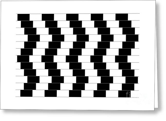 Ambiguity Greeting Cards - Cafe Wall Illusion Greeting Card by SPL and Photo Researchers
