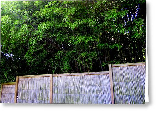 Bamboo Fence Greeting Cards - Caged By Their Own Greeting Card by Peter LaPlaca