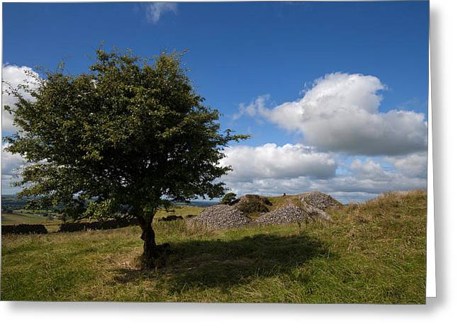 Megalithic Greeting Cards - Cairn D On Carbane West, Loughcrew Greeting Card by Panoramic Images