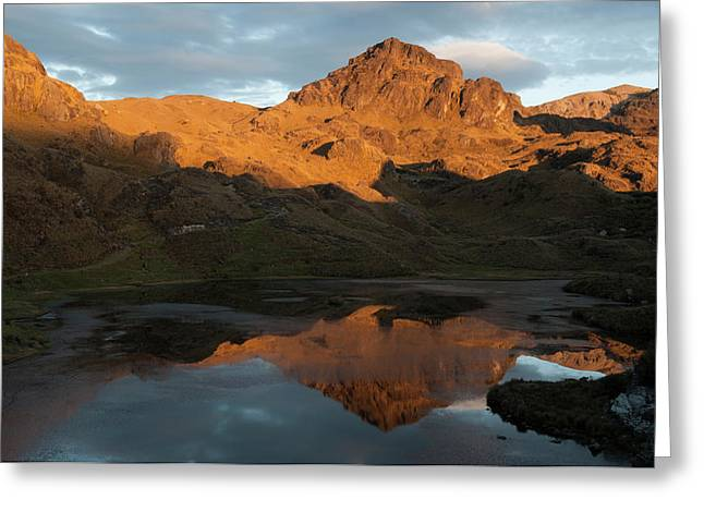 Cajas National Park (3000-4,400m Greeting Card by Pete Oxford