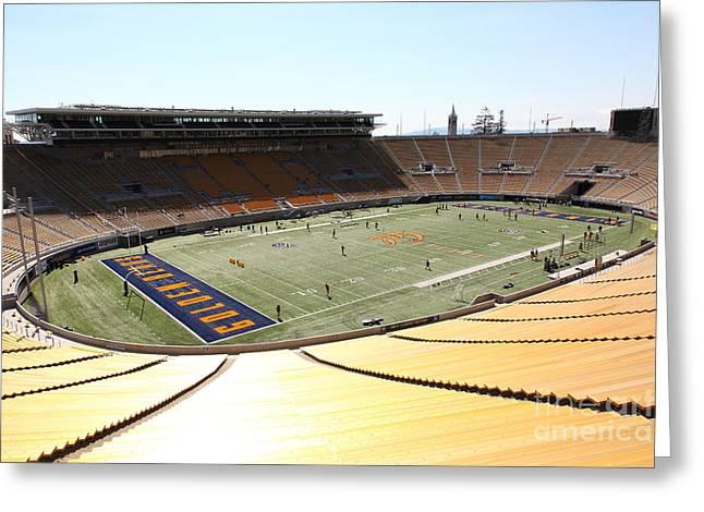 Cal Bear Greeting Cards - Cal Golden Bears California Memorial Stadium Berkeley California 5D24705 Greeting Card by Wingsdomain Art and Photography