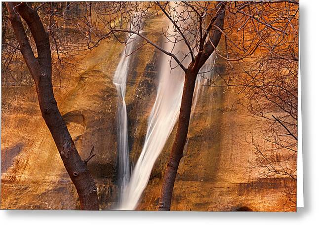Calf Creek Falls Greeting Card by Leland D Howard