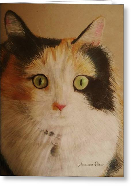 Calico Cat Greeting Card by Savanna Paine