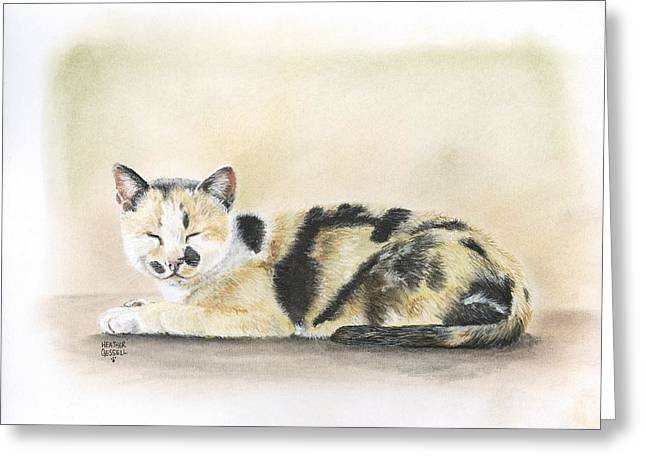Kitten Pastels Greeting Cards - Calico Greeting Card by Heather Gessell