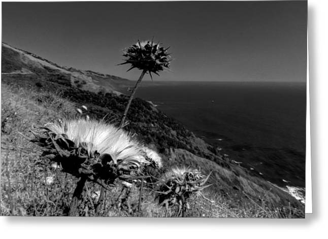 Santa Lucia Mountains Greeting Cards - California - Big Sur 002 Greeting Card by Lance Vaughn