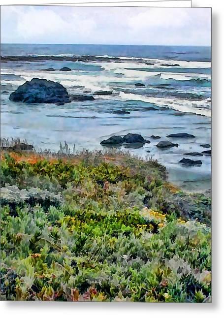 California Central Coast Near San Simeon Greeting Card by Elaine Plesser