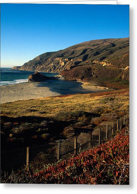 Big Sur Beach Greeting Cards - California Coast in Autumn 2 Greeting Card by Kathy Yates