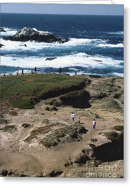 Californian Greeting Cards - California Coastline Greeting Card by Catherine Ursillo
