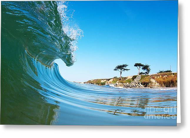 California Curl Greeting Card by Paul Topp