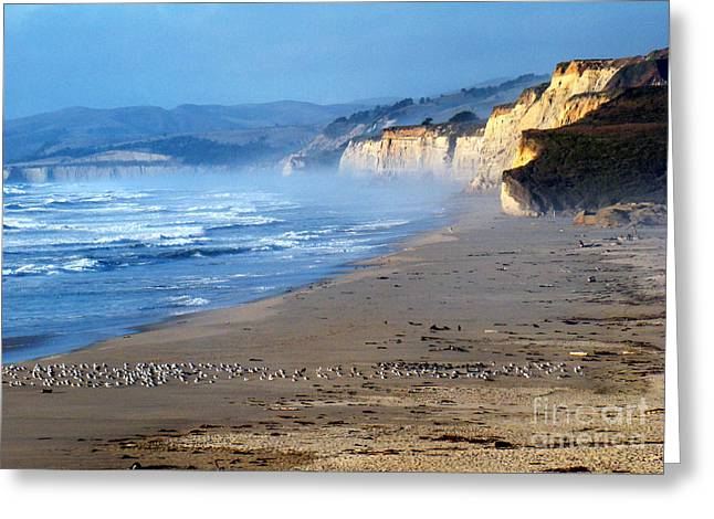 Big Sur California Greeting Cards - California Gold Greeting Card by Eva Kato