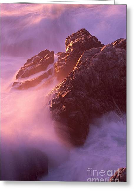 Point Lobos Greeting Cards - California Landscape Greeting Card by Art Wolfe