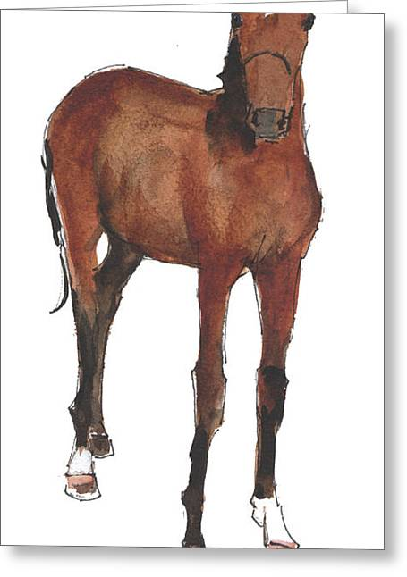 Race Horse Greeting Cards - California Offspring 2014 Greeting Card by Kathleen McElwaine