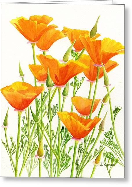 Watercolour Paintings Greeting Cards - California Poppies Greeting Card by Sharon Freeman