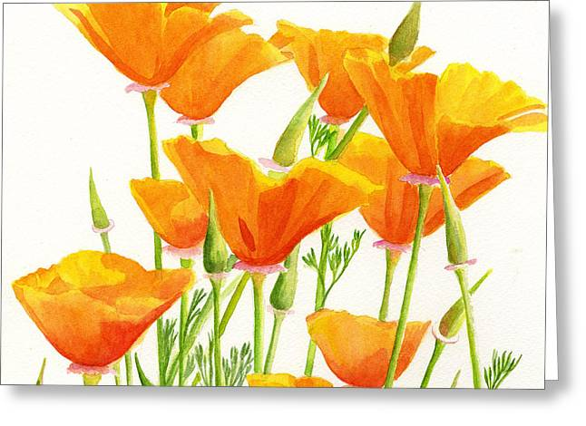 California Poppies Square Design Greeting Card by Sharon Freeman