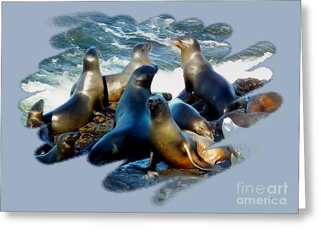California Sea Lions Greeting Cards - California Sea Lions - p2 Greeting Card by Scott Cameron