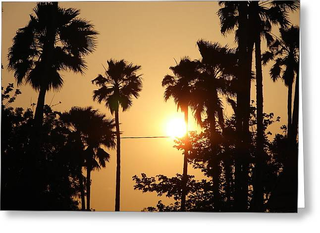 Gold Star Mother Greeting Cards - California Sun Greeting Card by Keisha Marshall