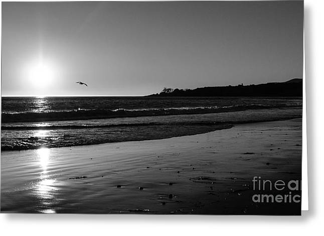 Beach In Santa Barbara Greeting Cards - California sunset in Black and White Greeting Card by Charlene Gauld