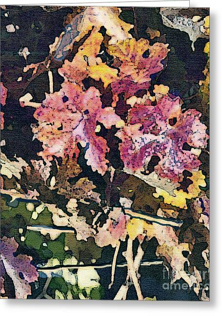 Grapevines Greeting Cards - California Vineyard Series Fall Grape Leaves Greeting Card by Artist and Photographer Laura Wrede