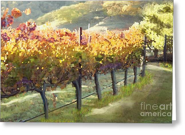 Most Paintings Greeting Cards - California Vineyard Series Morning in the Vineyard Greeting Card by Artist and Photographer Laura Wrede